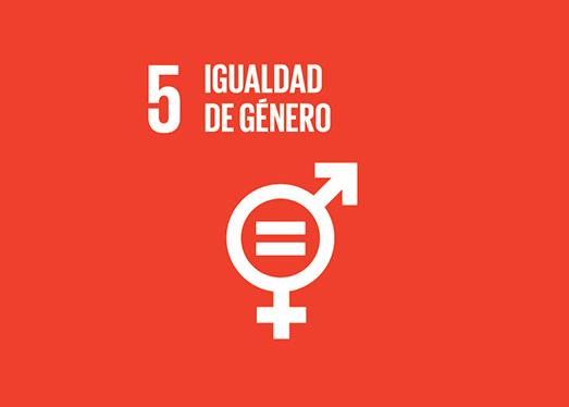 5_igualdad_genero